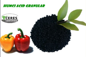 Slow Release Granular Organic Fertilizer Humic Acid pictures & photos