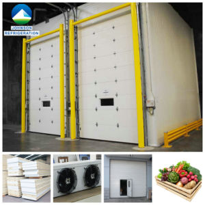 Ca Cold Room for Fruits with Atmosphere Control System