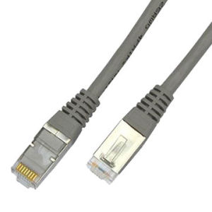 High Quality FTP CAT6A Patchcord 1m pictures & photos