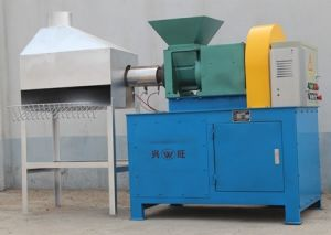 Tk250 Biomass Briquette Pelletizing Machine pictures & photos