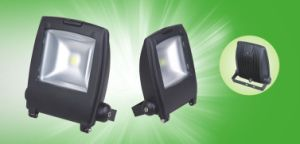 High Power 50W LED Floodlight IP65 with CE EMC pictures & photos
