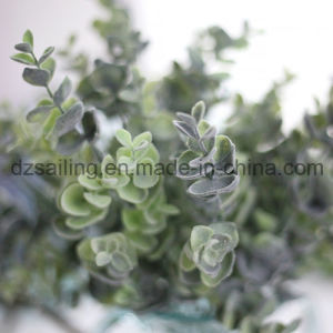 Plastic Flocky Leaves Aritificial Flower for Wedding/Home/Garden Decoration (SF16296A) pictures & photos