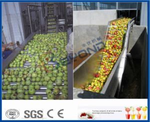 apple processing line pear processing machine pictures & photos