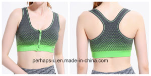 2016 Fashion Sexy Girls Sports Bra with Zipper pictures & photos