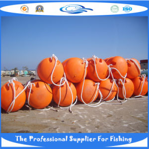 Professional Supplier of Fish Cage/Farming Cage (S6001176_) pictures & photos