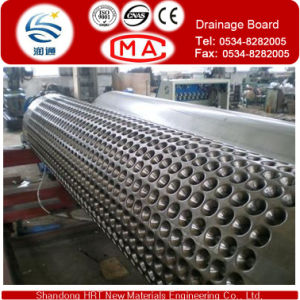 Football Field and Railway Subgrade Grade Drain Board /HDPE Drainage Sheet pictures & photos