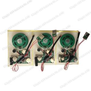 Light Sensor Sound Module, Recodable Musical Module pictures & photos