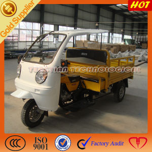 New Model Cargo Motos 3 Wheelers pictures & photos