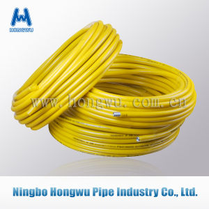 SUS304 Corrugated Flexible Natural Gas Connector Hose