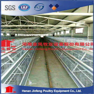 Chicken Farm Poultry Equipment Chicken Cage for Layer Broiler Breeding pictures & photos