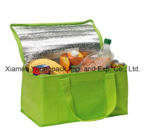 Promotional Large Fold Away Insulated Cool Bag pictures & photos