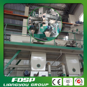 Factory Price Wood Pellet Hay Pellet Machine Plant pictures & photos