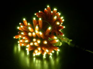 LED Christmas Light Xmas Decoration Ideas Street Holiday Lighting pictures & photos