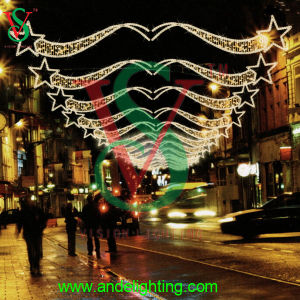Outdoor Wholesale christmas Light up Meteor Light Flashing Star Light pictures & photos