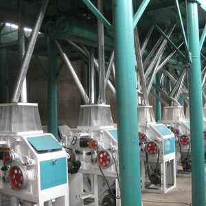 40-600tpd Automatic Wheat Flour Production Plant pictures & photos