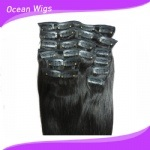 New Fashionable Wholesale Clip in Hair Extension Cheap 100% Human Hair Hair Extension Clip in (CH-009) pictures & photos
