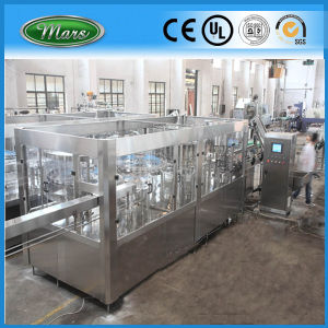 PLC Controled Automatic Bottled Fruit Juice Machine (RCGF32-32-10) pictures & photos