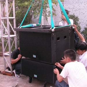 """Hot Sale Dual 10"""" Professional Line Array PRO Audio (CA-0010) pictures & photos"""