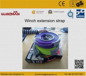 Tree Trunk Protector Strap (TS-T06-04)