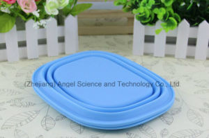 Heat Resistant Silicone Lunch Box, Foldable Silicone Food Bowl Sfb13 pictures & photos
