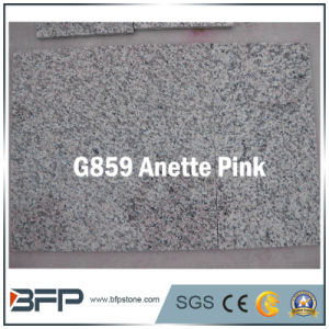 Anette Pink/Red Granite Tile for Construction/Building Material pictures & photos