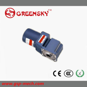 GS High Quality 90mm 120W AC Worm Gear Angle Motor pictures & photos