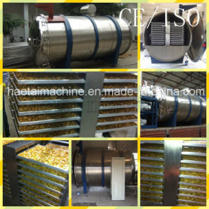 Vacuum Freeze Drying Machine / Food Freeze Dryer for Sale pictures & photos