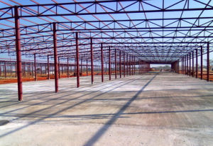 Steel Structure Workshop/Warehouse/Building