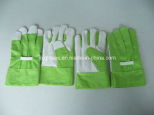 Green Garden Glove-Kids Glove-Safety Glove-Working Glove pictures & photos