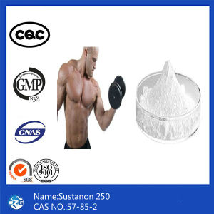 99% Purity CAS 57-85-2 Steriod Powder Bodybuilding Sustanon 250 pictures & photos