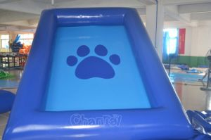 Small Backyard Inflatable Swimming Pool with Cat Footprint Pattern (chw603) pictures & photos