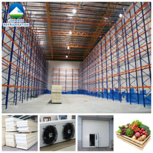Fruit Cold Room with Fire-Retardant PU Panel