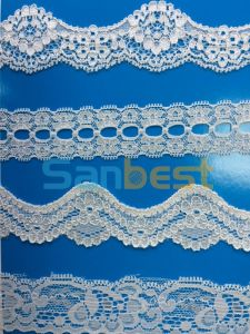 Fashionable Nylon/ Polyester/ Cotton Embroidery Lace for Under Wear pictures & photos