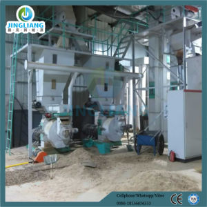 Jlne Manufacturer Wood Pellet Manufacturing Plant pictures & photos