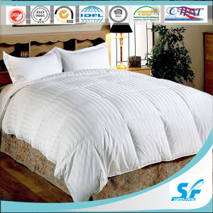 Comfortable 4 Season Single Comforter 330GSM 100% Wool Comforter to Korea pictures & photos