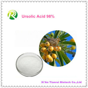 100% Natural Folium Eriobotryae Extract Ursolic Acid 98% pictures & photos