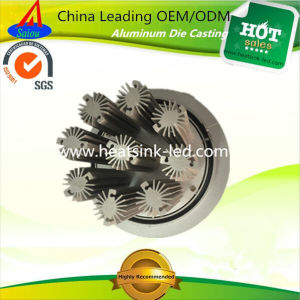 LED Light Parts Aluminum Radiators with Partner Worldwide Needed pictures & photos