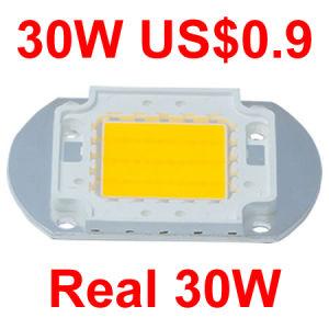 COB LED Chip 30W