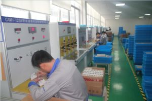 Dz47-63 Miniture Circuit Breaker MCB pictures & photos