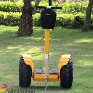 High Quality Electric Stand up Electric Balace Scooter pictures & photos