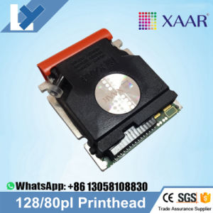 Original Light Grey/Purple/ New Xaar 128 40-W Print Head for Wit-Color 720t / Wit-Color 860+ / Dgi XP-3204t and Infiniti/ Liyu Large Format Printer pictures & photos