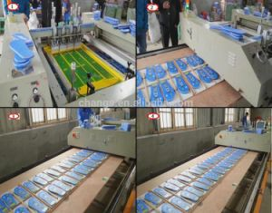 Automatic Flatbed Screen Printing Machine (SPT) pictures & photos