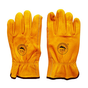 Hand Protection Cow Grain Leather Driving Gloves pictures & photos