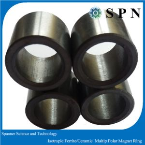 Ferrite Isotropic Multipolemagnet Rings for Stepping Motor pictures & photos