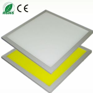 LED Panel Light 24W (SS-PL3030)