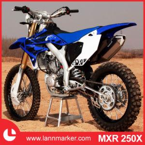 250cc Mini Dirt Bike pictures & photos