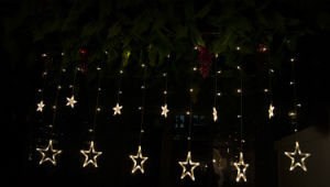 Twinkle LED Stars Wedding Decoration Lamp LED Curtain Light Holiday Lamp From China Supplier pictures & photos