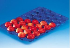 Popular Wholesale Mexico 5lb&15lb Black Blue Metric Food Grade Plastic Tray Tomato Insert pictures & photos