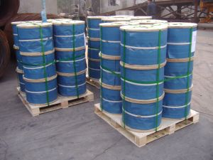 6X7+FC Galvanized Steel Wire Rope pictures & photos