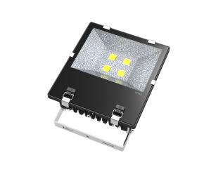 Outdoor High-End Fin 200W LED Flood Light